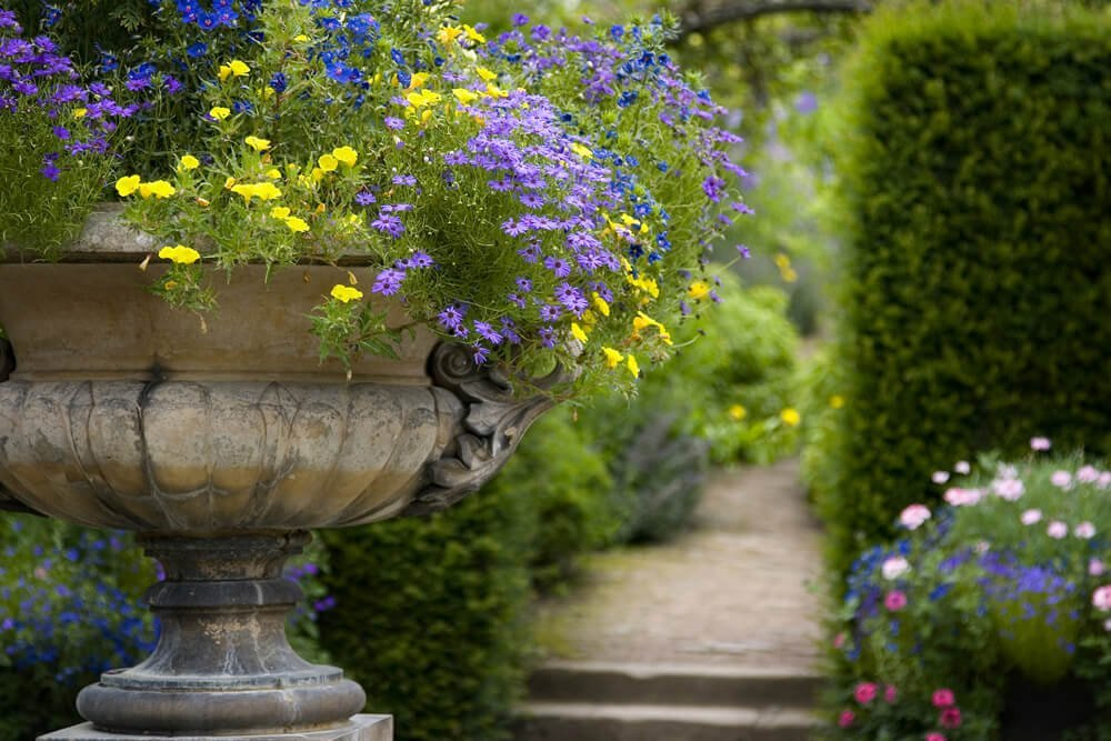 Photo of pathway in lovely garden with flower feature close up