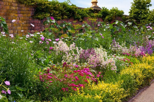 Photo of a garden flowerbed going in to distance