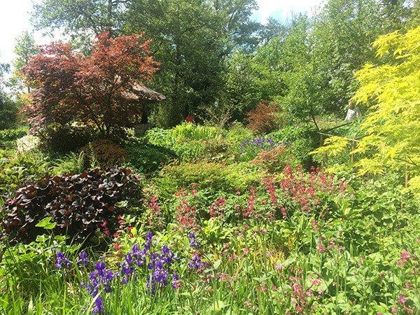 garden landscape designer ideas